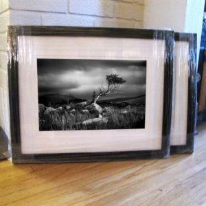 Fairy Tree by Hendrickson Fine Art Photography, 16x20 framed